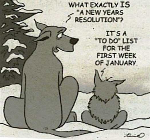 new-years-resolutions-are